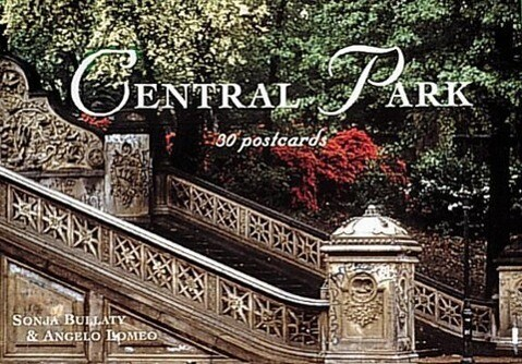 An Central Park Notes on Cultural Fusion in the Americas als Taschenbuch