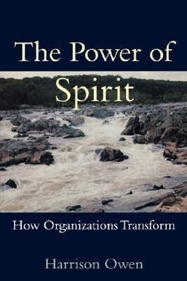 The Power of Spirit: How Organizations Transform als Taschenbuch