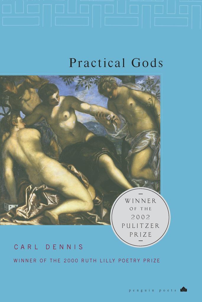 Practical Gods als Taschenbuch