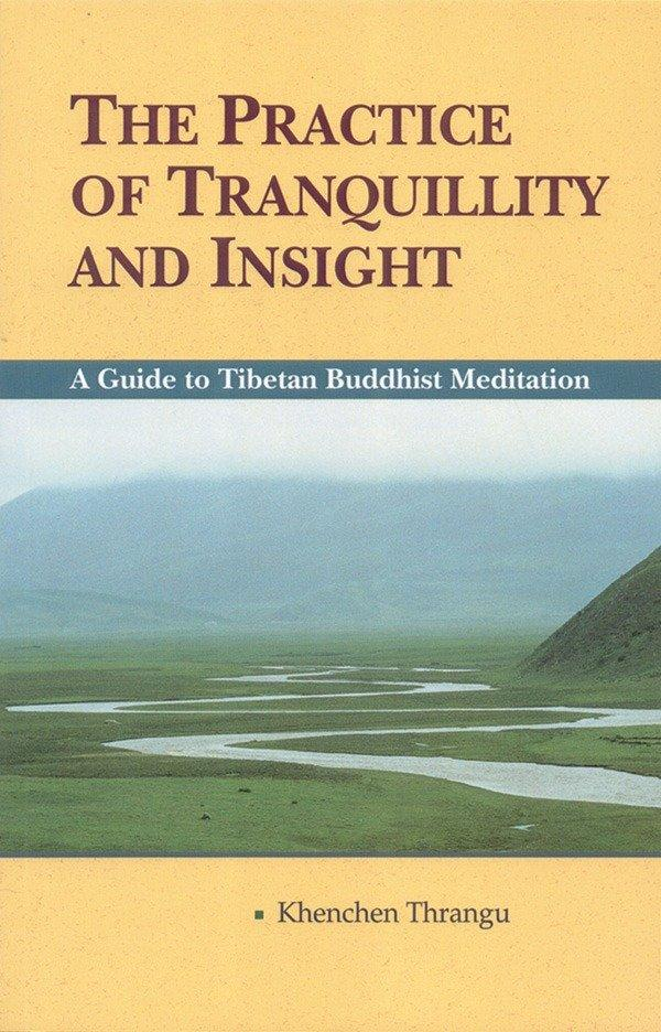 The Practice Of Tranquillity And Insight als Taschenbuch