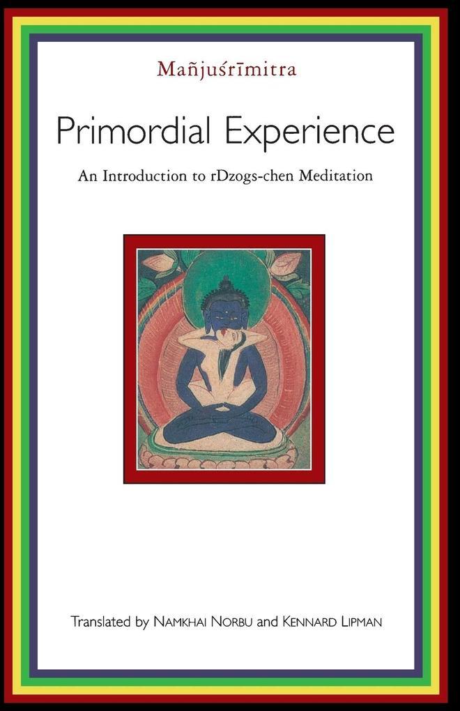 Primordial Experience als Taschenbuch