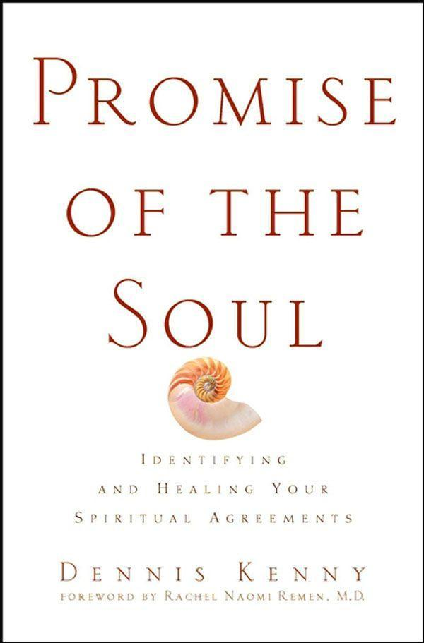 Promise of the Soul: Identifying and Healing Your Spiritual Agreements als Buch