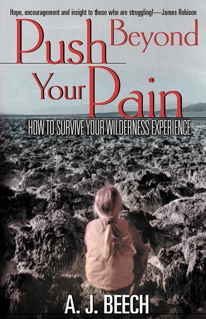 Push Beyond Your Pain als Taschenbuch