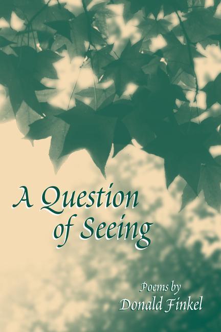 Question of Seeing als Taschenbuch