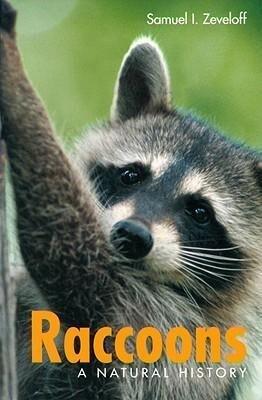 Raccoons: Raccoons als Taschenbuch