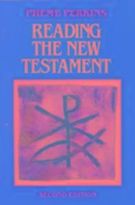 Reading the New Testament als Taschenbuch