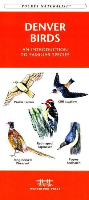 Redwood National and State Parks: An Introduction to Familiar Plants and Animals als Taschenbuch