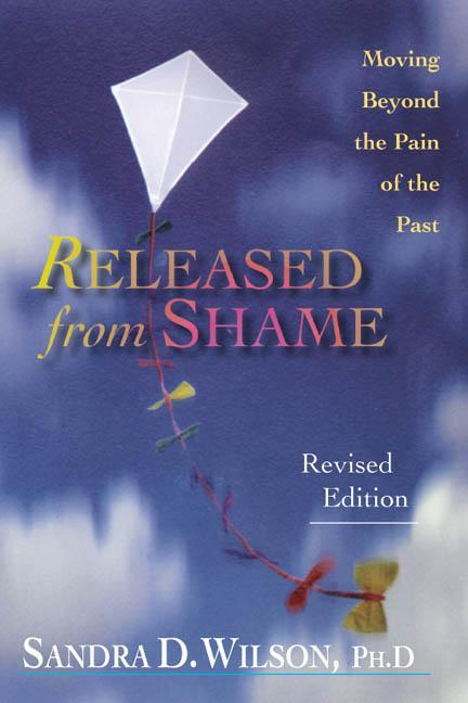 Released from Shame: Ministry in the Spirit According to Paul als Taschenbuch