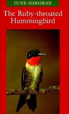 The Ruby-throated Hummingbird als Buch