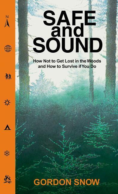 Safe & Sound als Taschenbuch