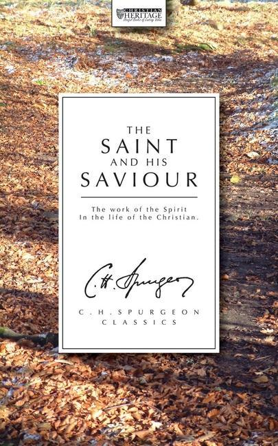The Saint and His Saviour: The Work of the Spirit in the Life of the Christian als Taschenbuch