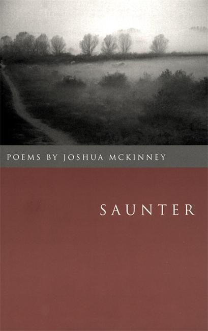 Saunter: Poems als Taschenbuch