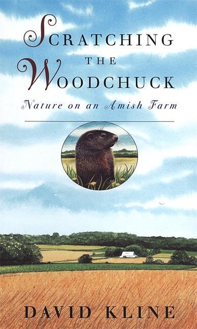 Scratching the Woodchuck als Taschenbuch