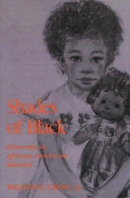 Shades of Black: Diversity in African American Identity als Taschenbuch