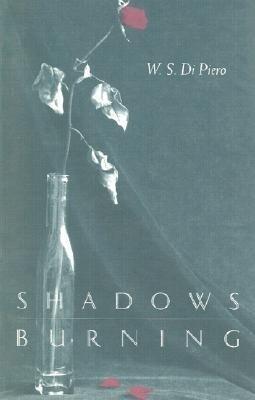 Shadows Burning als Taschenbuch