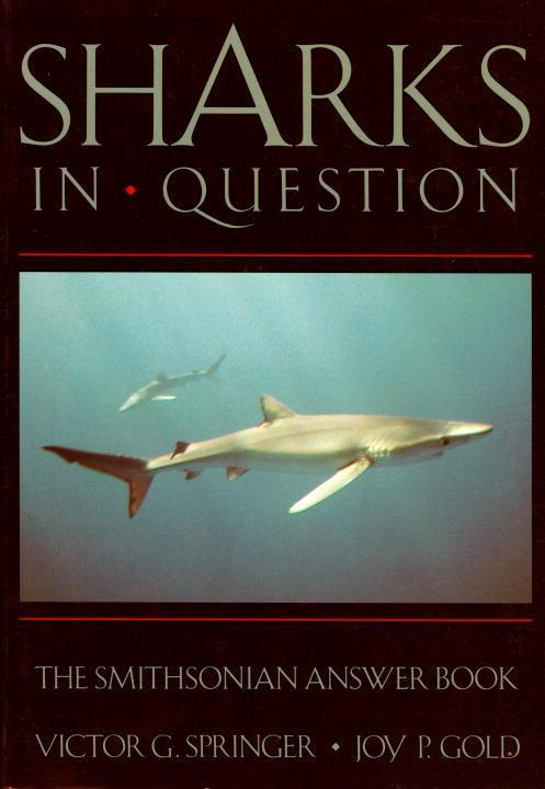Sharks in Question als Taschenbuch