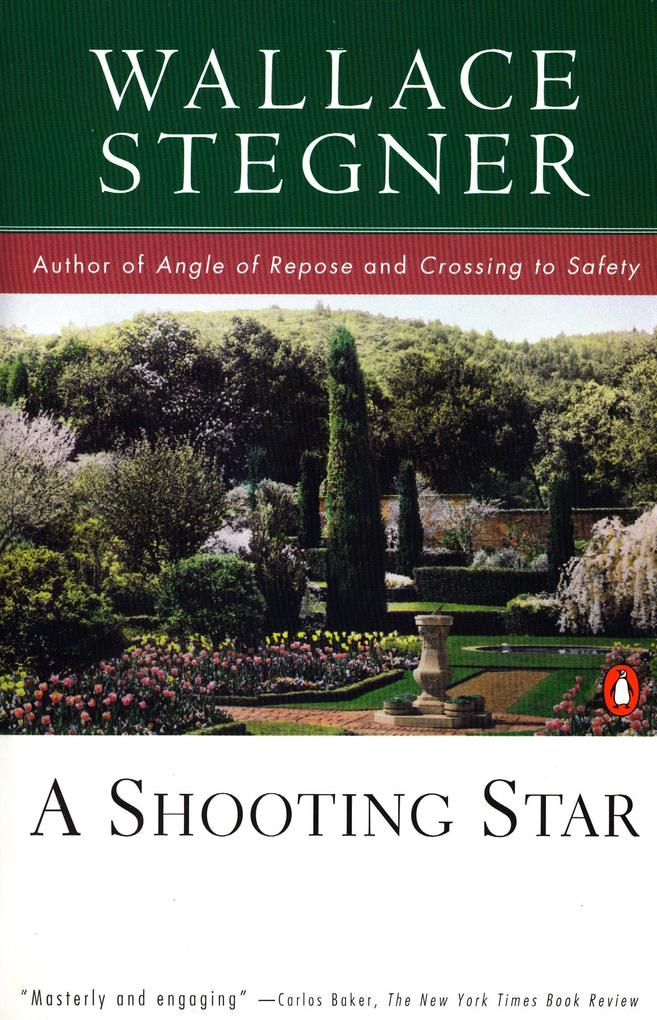 A Shooting Star als Taschenbuch
