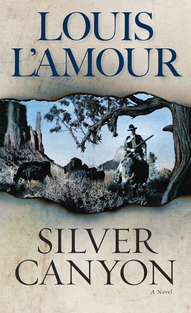 Silver Canyon als Taschenbuch