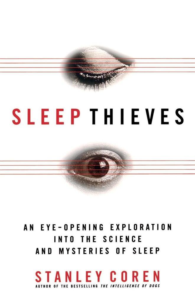 Sleep Thieves als Buch