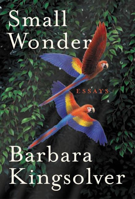 Small Wonder: Essays als Buch