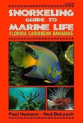 Snorkeling Guide to Marine Life als Taschenbuch