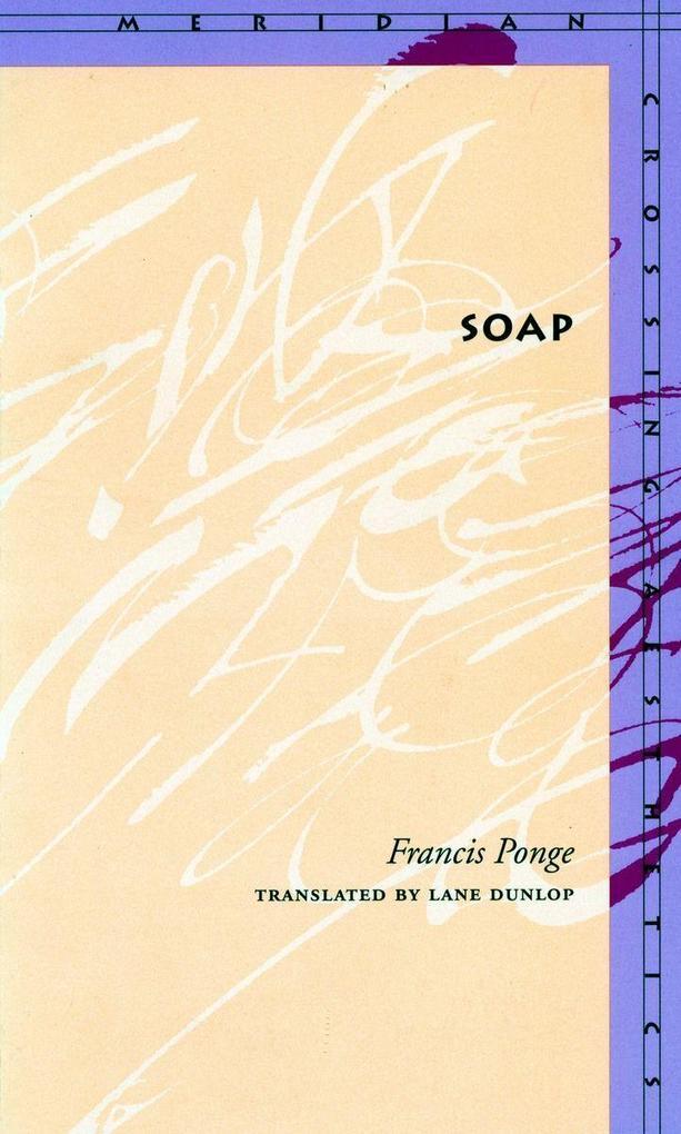 Soap als Taschenbuch