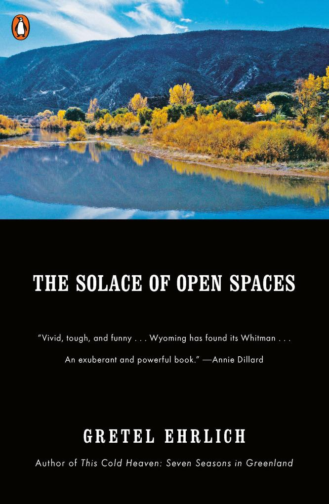 The Solace of Open Spaces als Taschenbuch