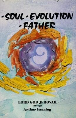 Soul Evolution Father als Taschenbuch