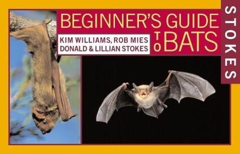 Stokes Beginner's Guide to Bats als Taschenbuch