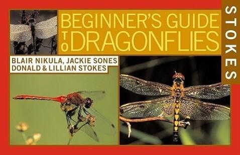 Stokes Beginner's Guide to Dragonflies als Taschenbuch