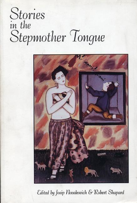 Stories in the Stepmother Tongue als Taschenbuch