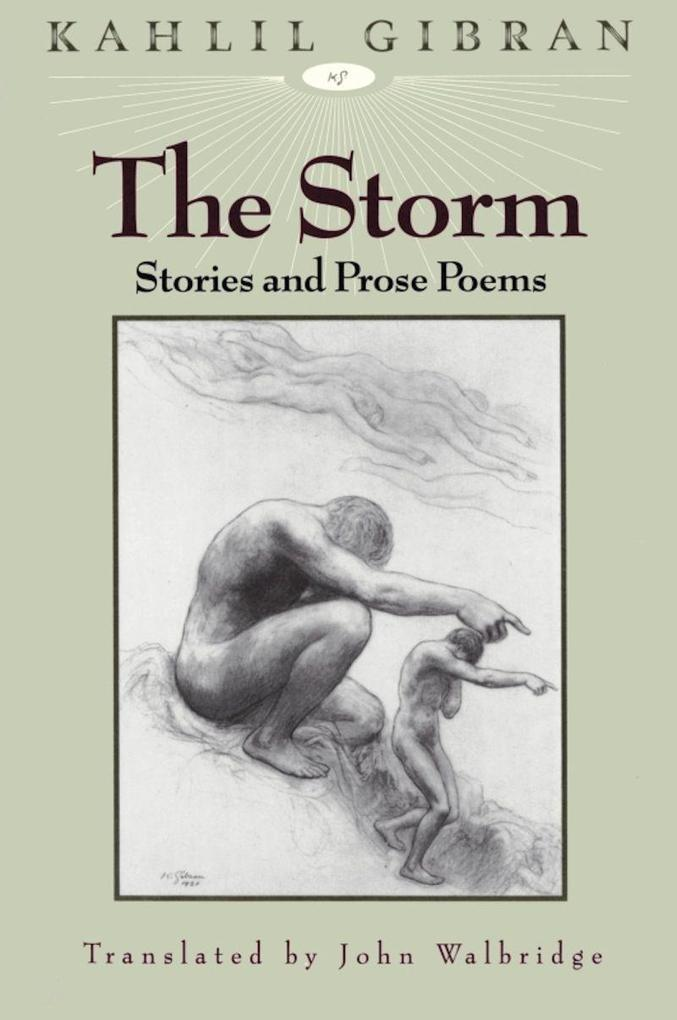 The Storm als Buch