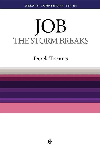 Wcs Job: The Storm Breaks als Taschenbuch