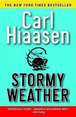 Stormy Weather als Taschenbuch