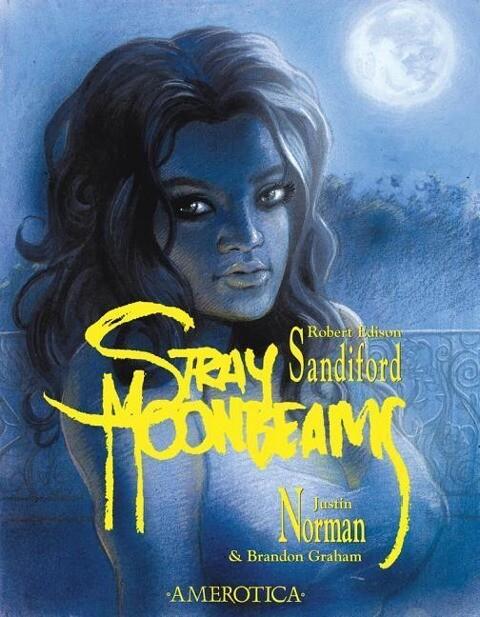 Stray Moonbeams als Taschenbuch