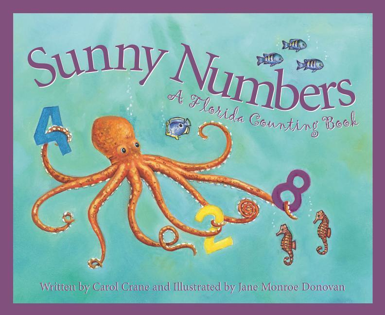 Sunny Numbers als Buch