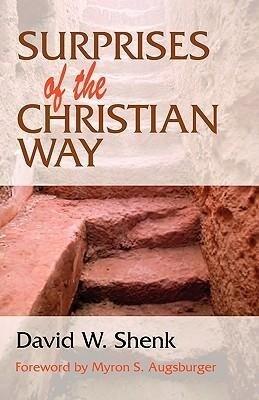 Surprises of the Christian Way als Taschenbuch