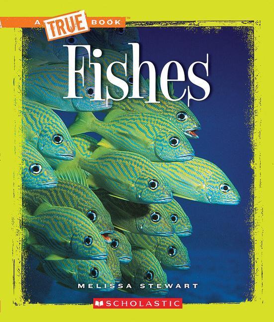 FISHES als Taschenbuch