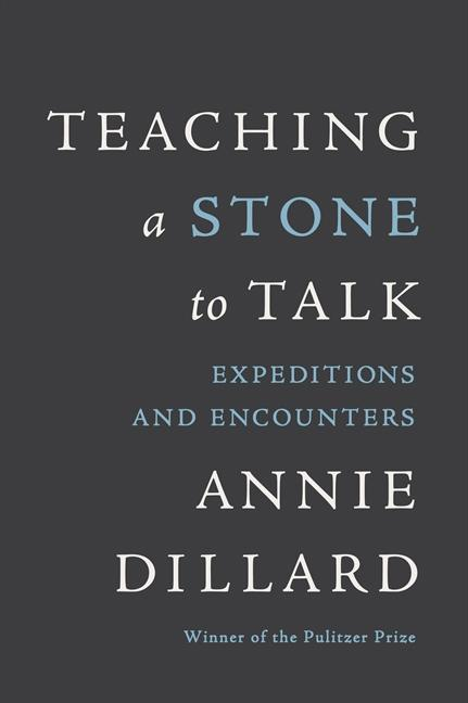 Teaching a Stone to Talk: Expeditions and Encounters als Taschenbuch