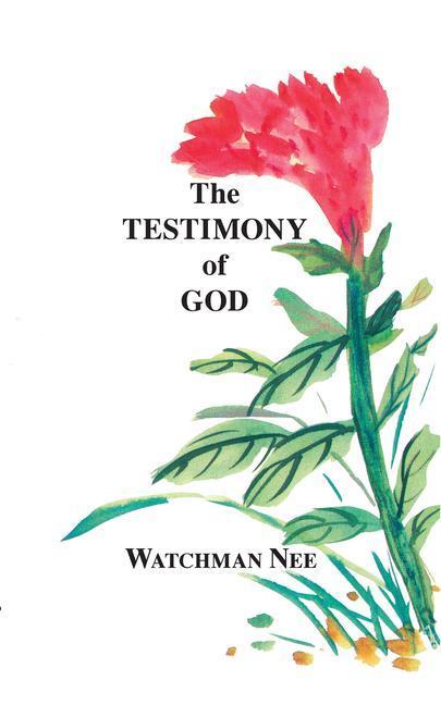 Testimony of God: als Taschenbuch