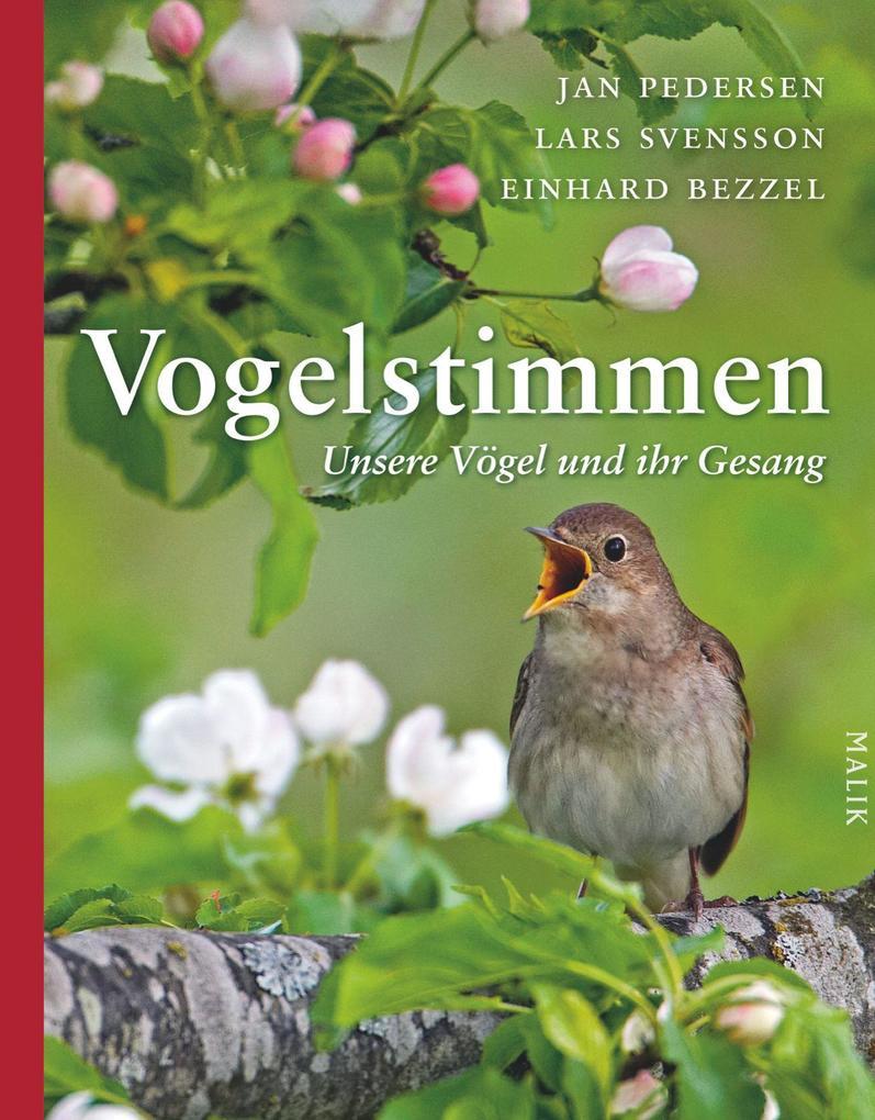 Vogelstimmen als Buch (gebunden)