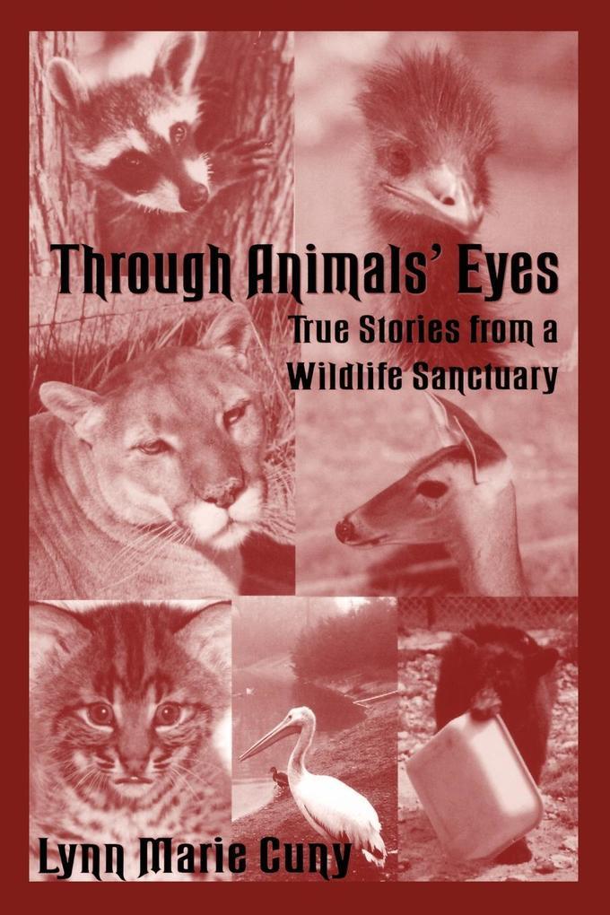 Through Animals' Eyes: True Stories from a Wildlife Sanctuary als Taschenbuch