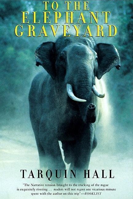 To the Elephant Graveyard als Taschenbuch