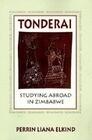 Tonderai: Studying Abroad in Zimbabwe