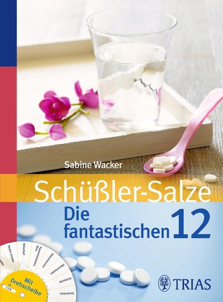 Schüßler-Salze: Die fantastischen 12 als Buch