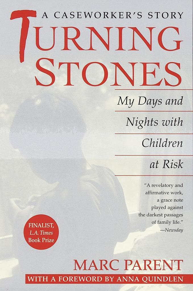 Turning Stones: My Days and Nights with Children at Risk als Taschenbuch