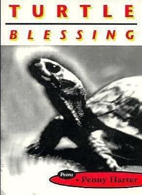 Turtle Blessing als Taschenbuch