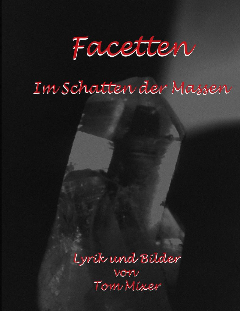 Facetten als eBook