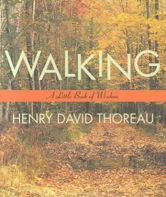 Walking als Taschenbuch