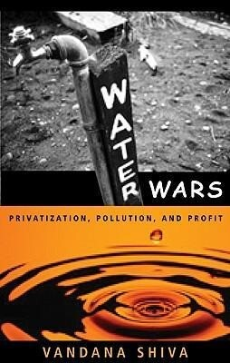 Water Wars: Privatization, Pollution, and Profit als Taschenbuch